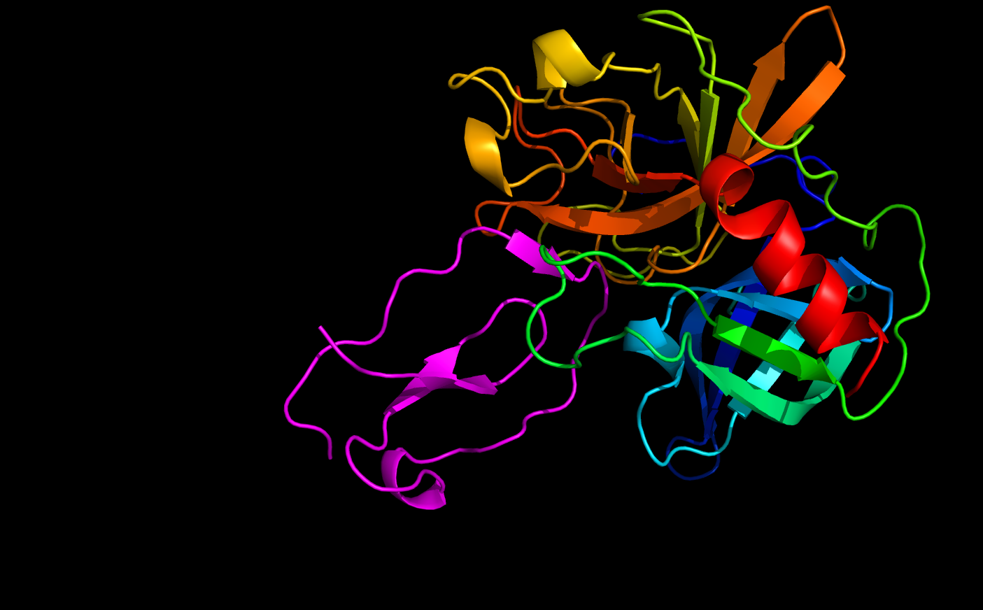 Shown above is human elafin, colored in pink, complexed with an elastase protein.
